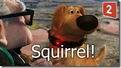 squirrel-2[1]